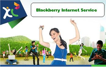 Paket Blackberry Xl Murah Dari Java Pulsa