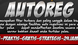 Fitur Request AutoReg Java Pulsa